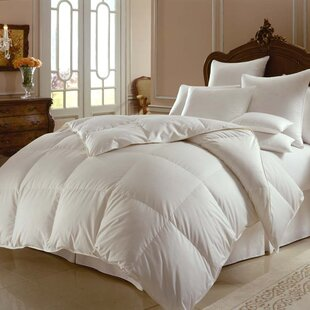 Himalaya 800 Midweight Down Comforter By Downright