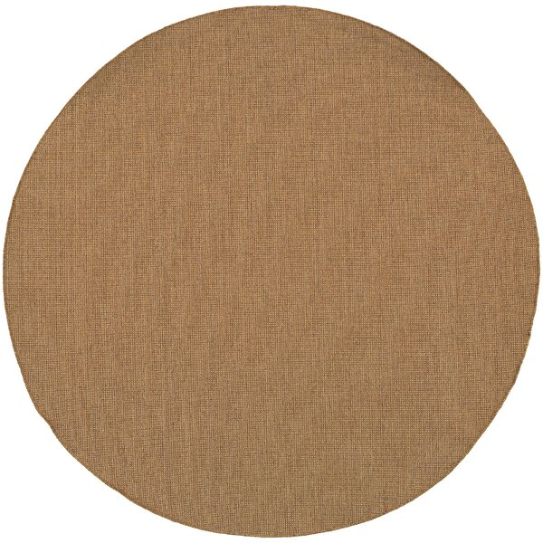 South Hampton Tan Indoor/Outdoor Area Rug by Threadbind