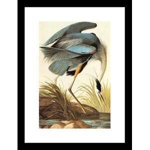 Great Blue Heron Framed Painting Print by Buyenlarge