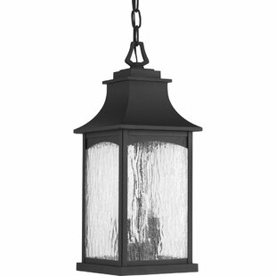 Bargain De Witt 2-Light Outdoor Hanging Lantern By Darby Home Co