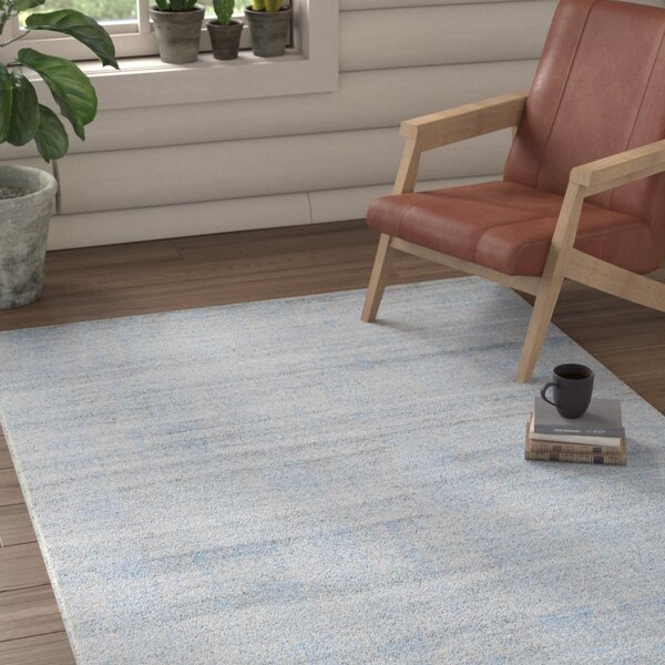 Runge Hand-Knotted Gray Area Rug by Loon Peak