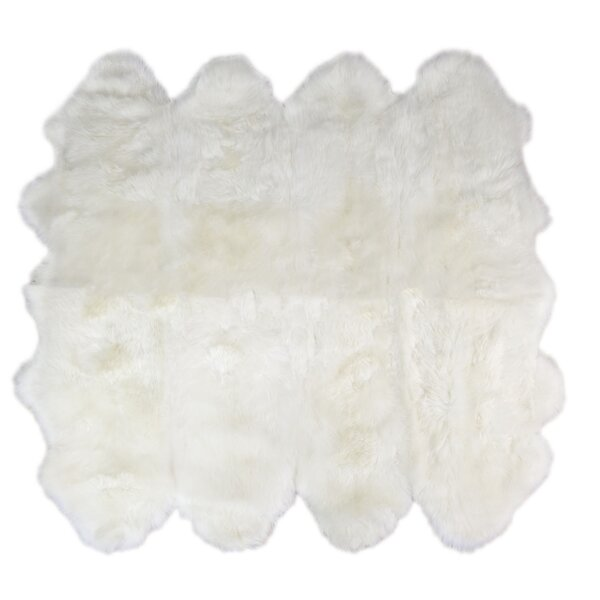 Octo Handmade Ivory Area Rug by Super Area Rugs