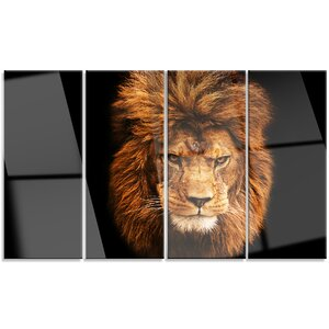 'Face of Male Lion on Black' 4 Piece Photographic Print on Canvas Set by Design Art