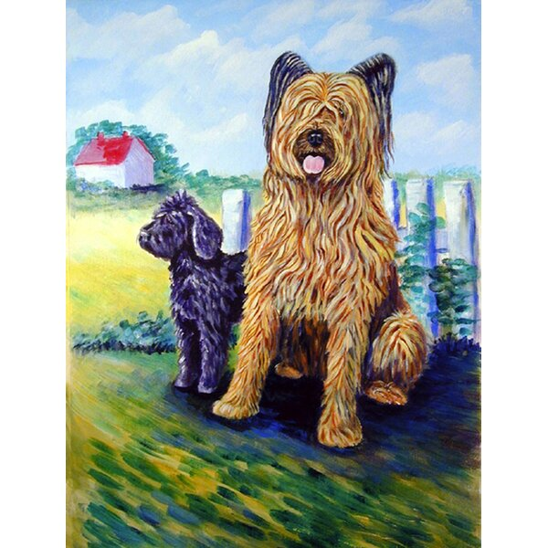 Briard Training Day for the Puppy House Vertical Flag by Caroline's Treasures