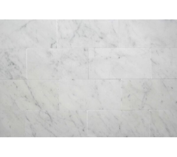 3'' x 6'' Carrara Marble Field Tile in Honed Bianco by Ephesus Stones