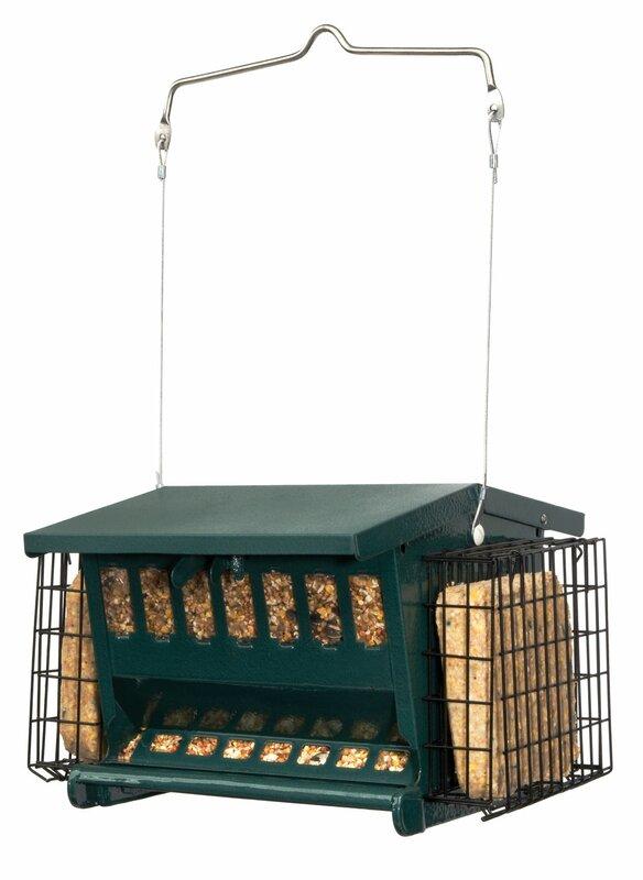 Mini Seeds-N-More Hopper Bird Feeder with Suet Holder