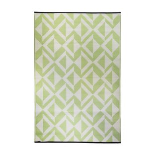 Looking for Premier Home Hand-Woven Green/White Indoor/Outdoor Area Rug By Fox Hill Trading