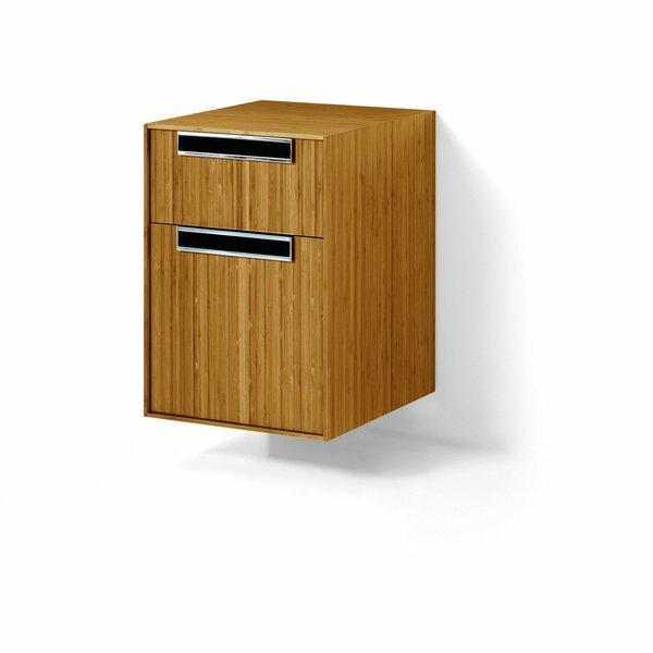 Scotts Valley 15.75 W x 22.2 H Cabinet by Brayden Studio