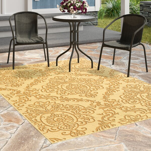 Carriage Hill Beige/Gold Indoor/Outdoor Area Rug by Charlton Home