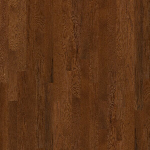 Sawgrass 3-1/4 Solid White Oak Hardwood Flooring in Laurel by Shaw Floors