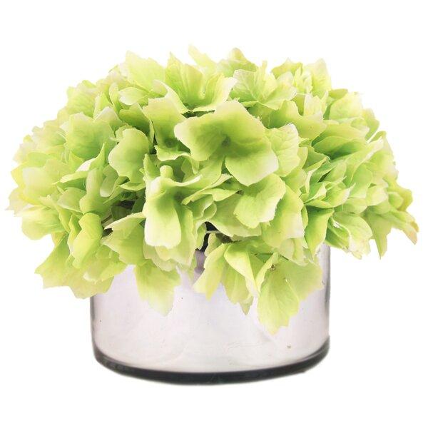 Hydrangea Reflection Pot by Charlton Home