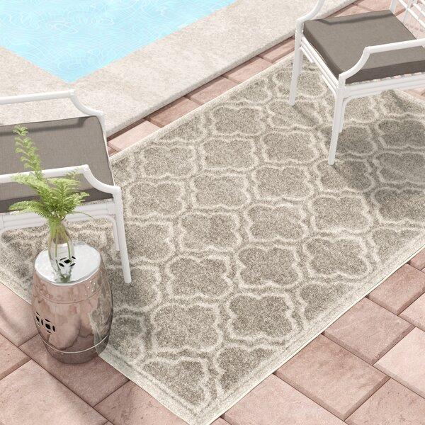 Maritza Gray Outdoor Area Rug by Willa Arlo Interiors