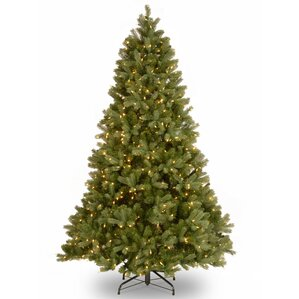 downswept douglas 65 green fir artificial christmas tree with 650 clear lights and stand - 6 Christmas Tree