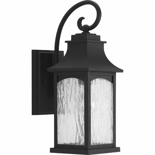 Compare & Buy De Witt 1-Light Outdoor Wall Lantern By Darby Home Co