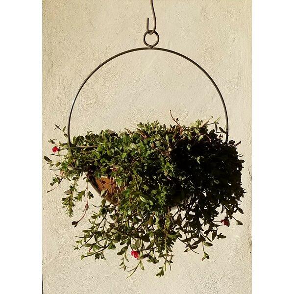 Handmade Circular Frame and Planter by Starlite Garden and Patio Torche Co.