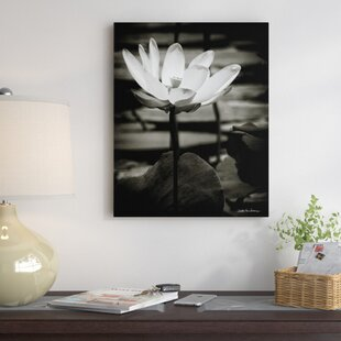 Lotus flower canvas wall art wayfair lotus flower viii photographic print on canvas mightylinksfo