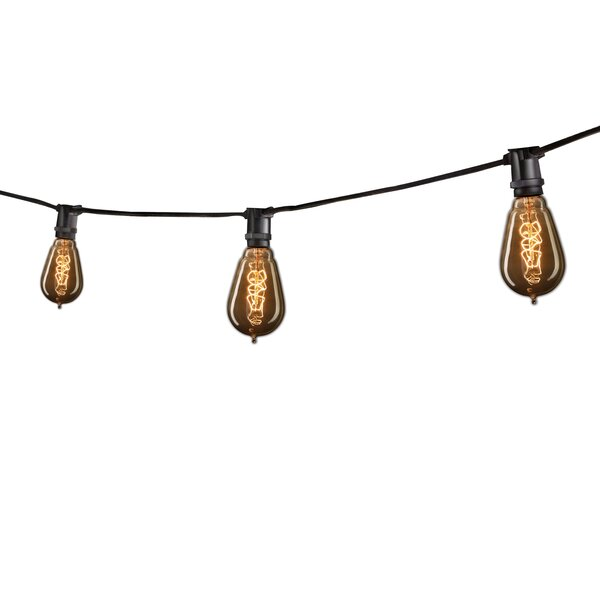15 Light Outdoor String Light by Bulbrite Industries