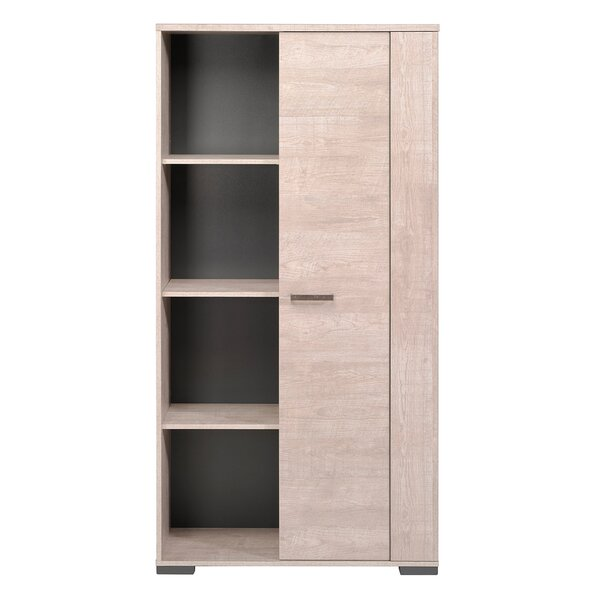 Layna Standard Bookcase by Orren Ellis