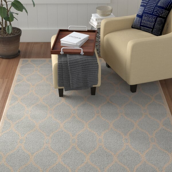 Molly Light Gray Area Rug by Winston Porter