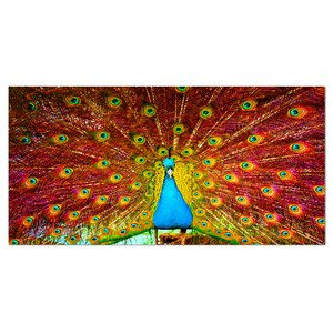 'Peacock Dancing' Graphic Art on Wrapped Canvas by Design Art