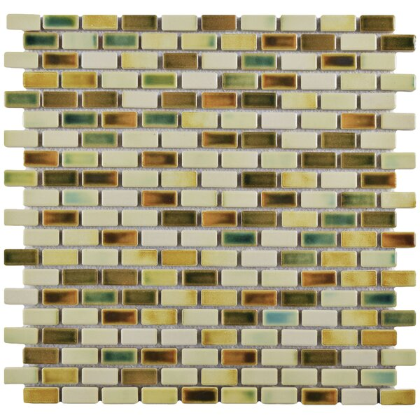 Arcadia 0.5 x 1 Porcelain Mosaic Tile in Springfield by EliteTile