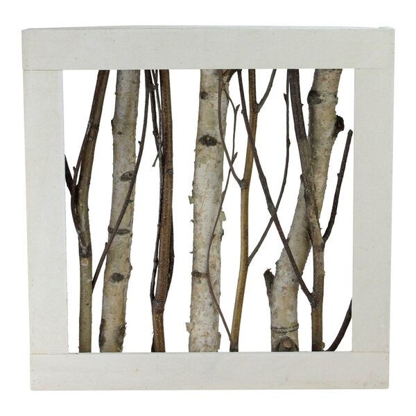Hardwick Branches in Wood Box Table Top Sculpture by Union Rustic