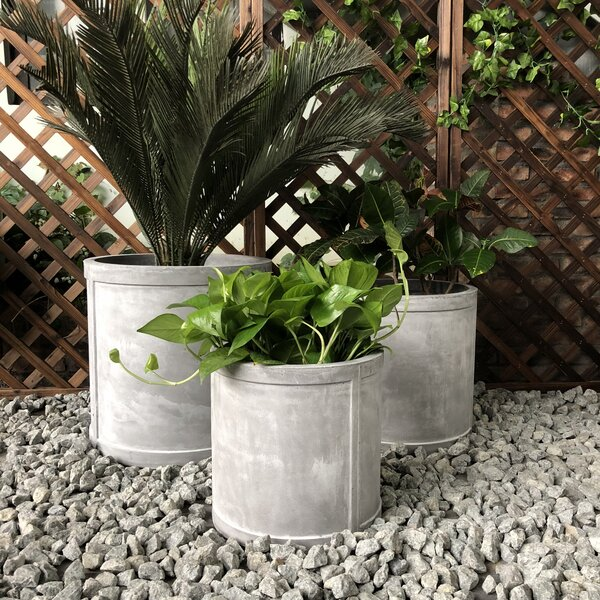 Galindo Cylinder 3-Piece Pot Planter Set by Williston Forge
