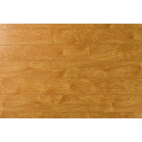 Ariele 7 x 48 x 12mm Oak Laminate Flooring in White Mocha by Serradon