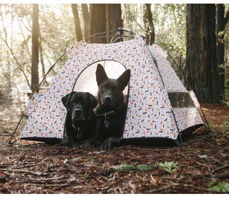 Darrell Outdoor Dog Tent by Tucker Murphy Pet