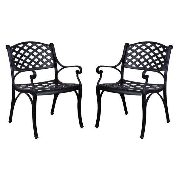 Amelio Patio Dining Chairs (Set of 2) by Darby Home Co