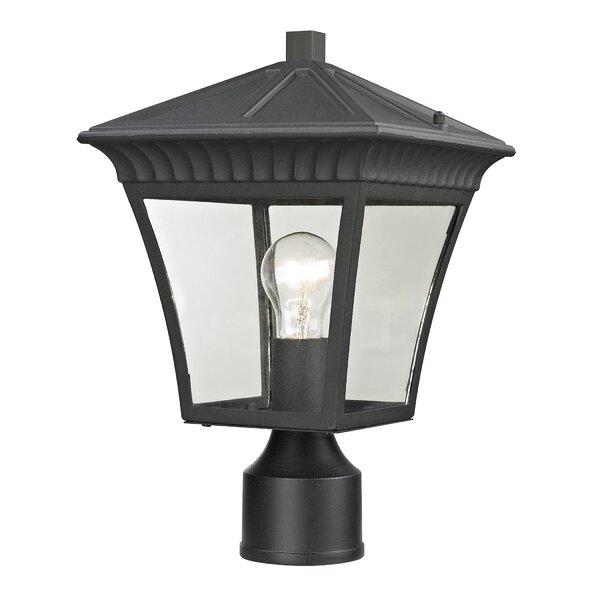 Berrywood Medium 1-Light Lantern Head by Astoria Grand