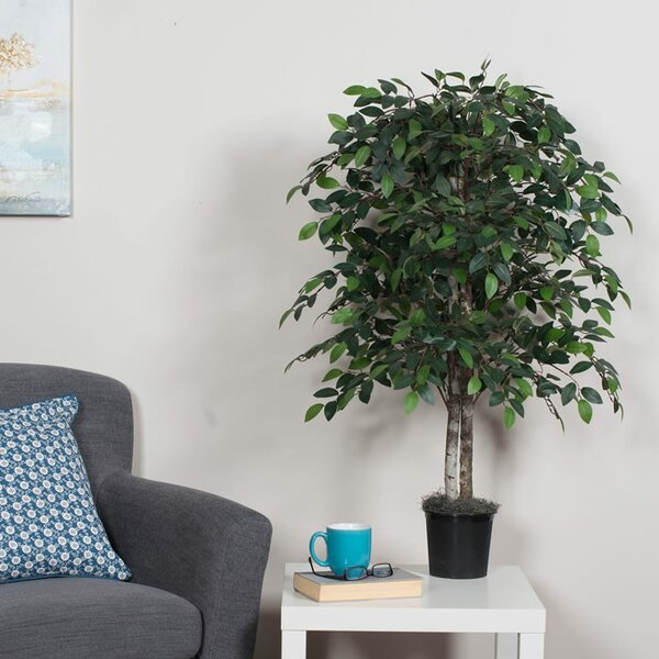 Artificial Ficus Bush Floor Foliage Tree in Pot by Gracie Oaks