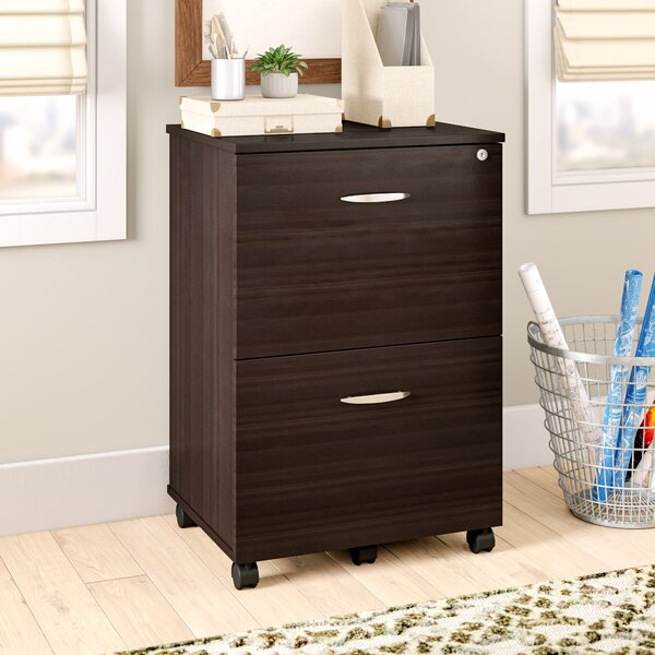 Bayswater 2 Drawer Mobile Vertical File by Ebern Designs
