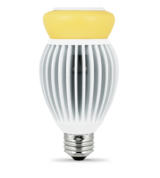 22W Forsted LED Light Bulb by FeitElectric