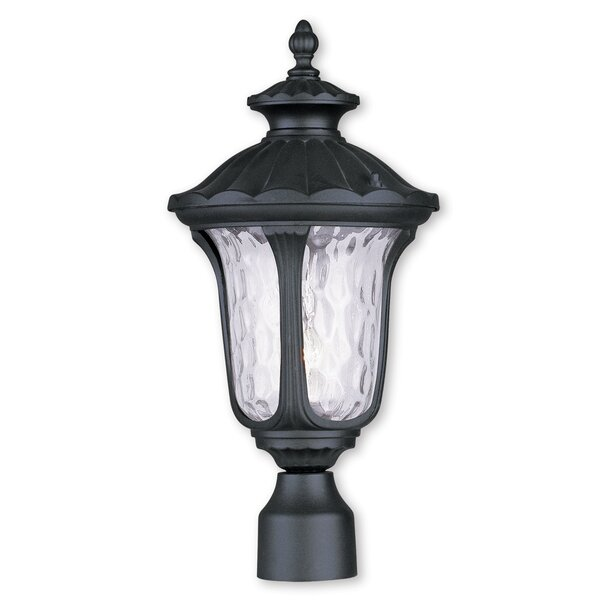 Gunnell Outdoor Glass Lantern Head by Three Posts