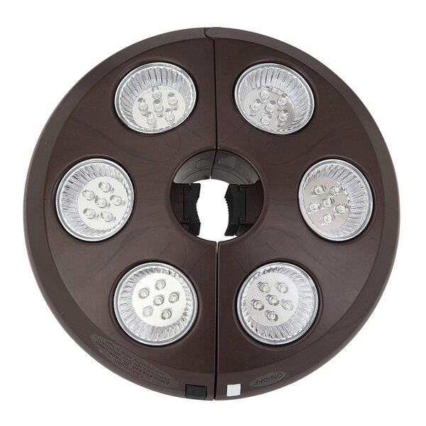 Augustus Rechargeable Umbrella Light by Freeport Park