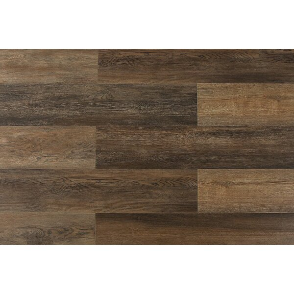 Aditya  8 x 71 x 12mm Laminate Flooring in Saluzzo by Serradon