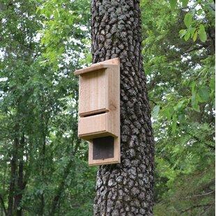 Bat House Bachelor Pad Up to 30 Bats Single Chamber Eastern White Pine