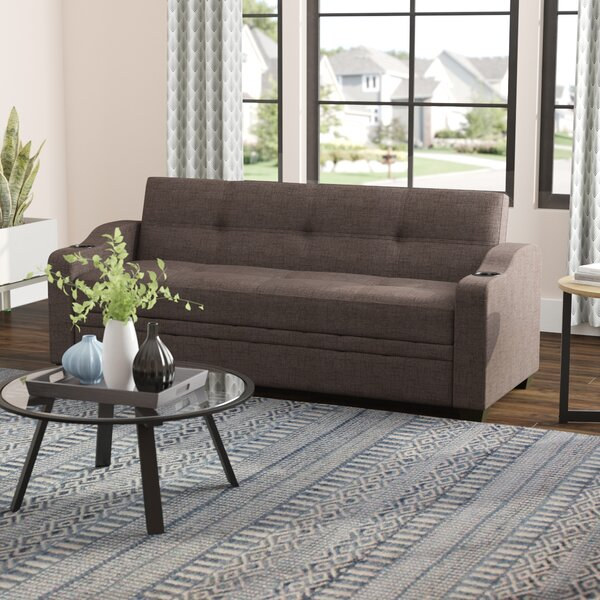 Alloway Elegant Sleeper Sofa by Mercury Row