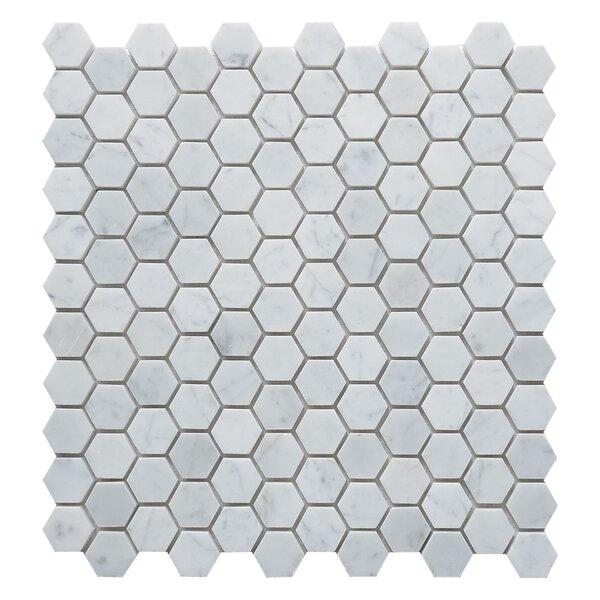 Carrara Hexagon 1 x 1 Marble Mosaic Tile in White by Matrix Stone USA