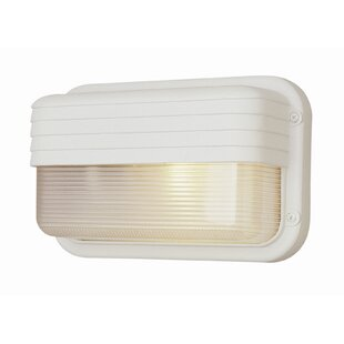 Affordable 1-Light Outdoor Flush Mount By TransGlobe Lighting