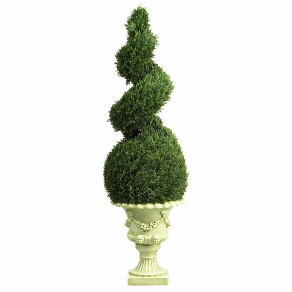 Cedar Spiral Topiary Floor Plant in Urn by Astoria Grand