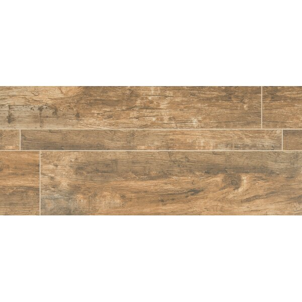 Forest 9 x 36 Porcelain Field Tile in Brown by MSI