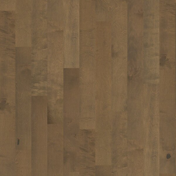 Whispering 5 Engineered Birch Hardwood Flooring in Medium by Shaw Floors