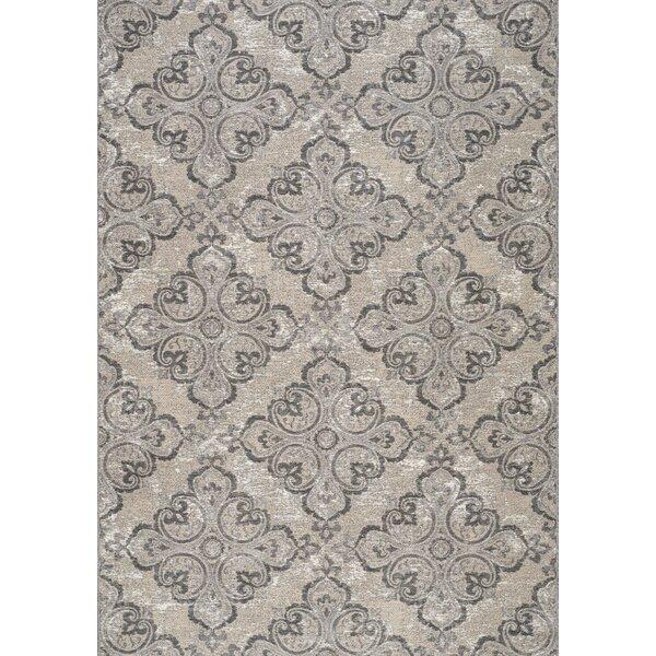 Holden Jacquard Pattern Gray/Beige Indoor/Outdoor Area Rug by Fleur De Lis Living