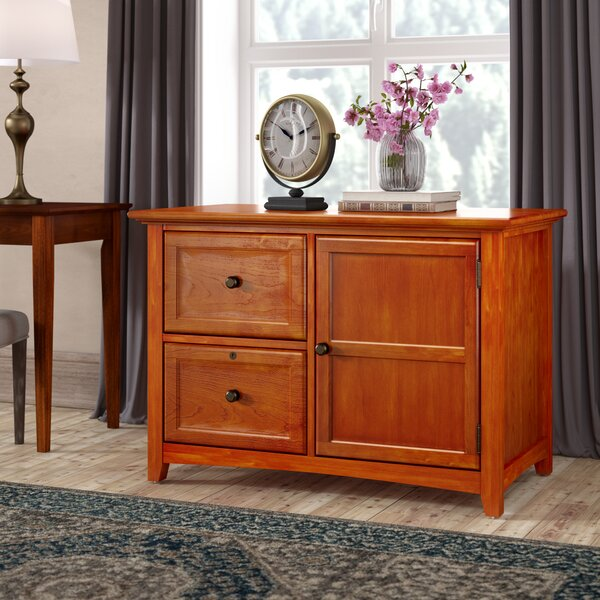 Seger 2 Drawer Lateral File with Door by Darby Home Co