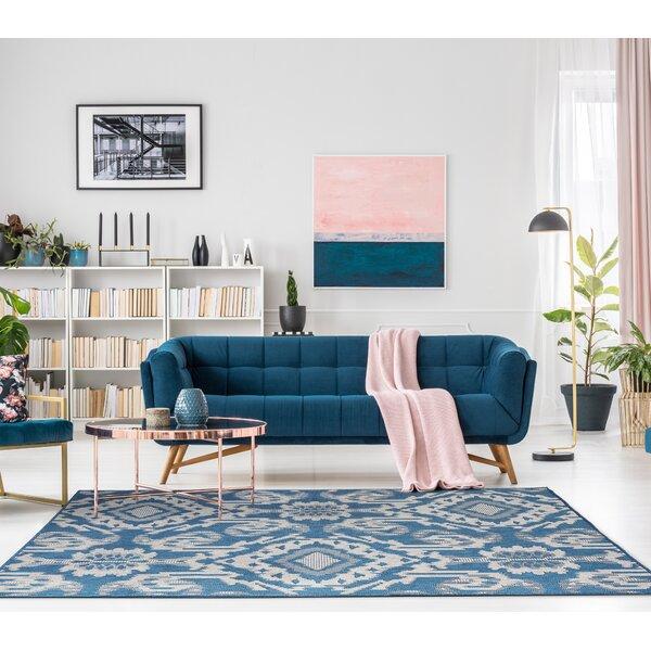 Barger Blue Indoor/Outdoor Area Rug