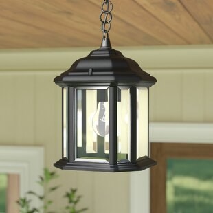 Reviews Burtt 1-Light Outdoor Hanging Lantern By Darby Home Co
