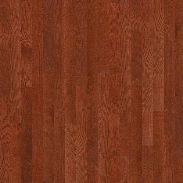 3-1/4 Solid Oak Hardwood Flooring in Merlot by Welles Hardwood