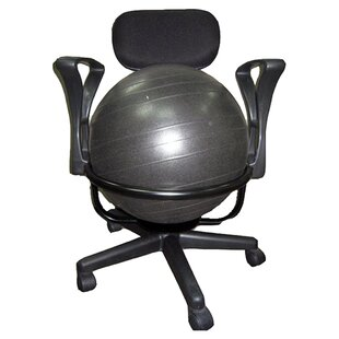 High Back Exercise Ball Chair